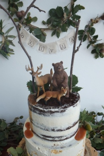 CakeDesign_festa